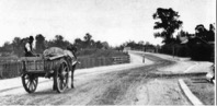 Northfield Avenue 1903 with cart approaching the bridge over the railway line from the north